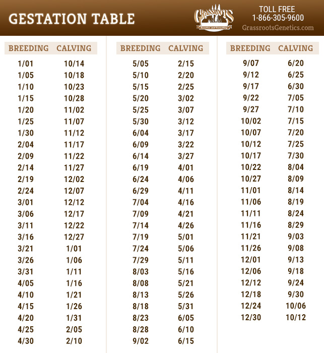 Gestation Table